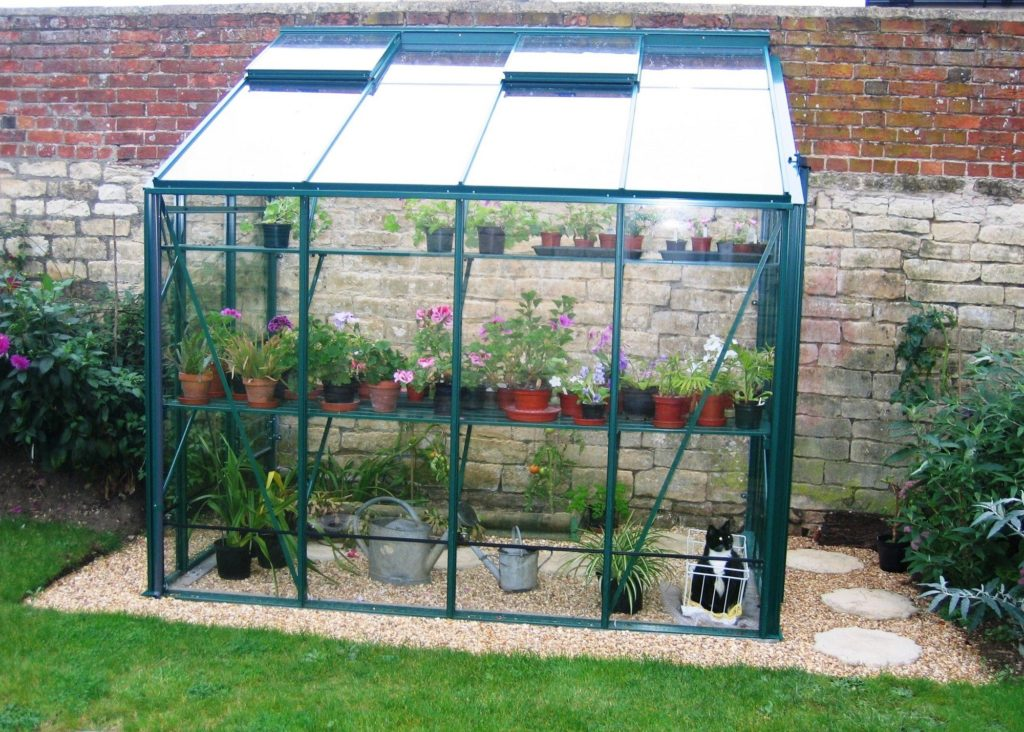 Robinsons Lean to Greenhouse Old Cottage Green